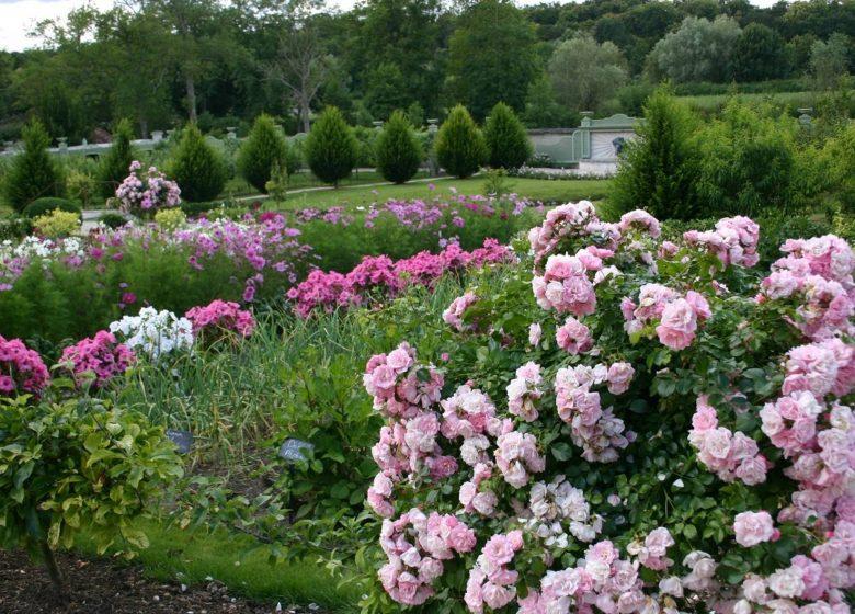 La magie d'un jardin d'exception au cœur de Chantilly
