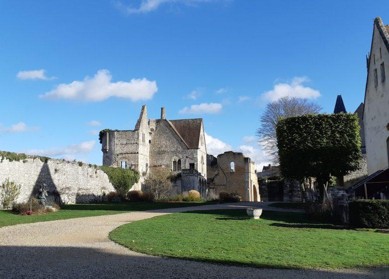 Vestiges du Château royal et Parc