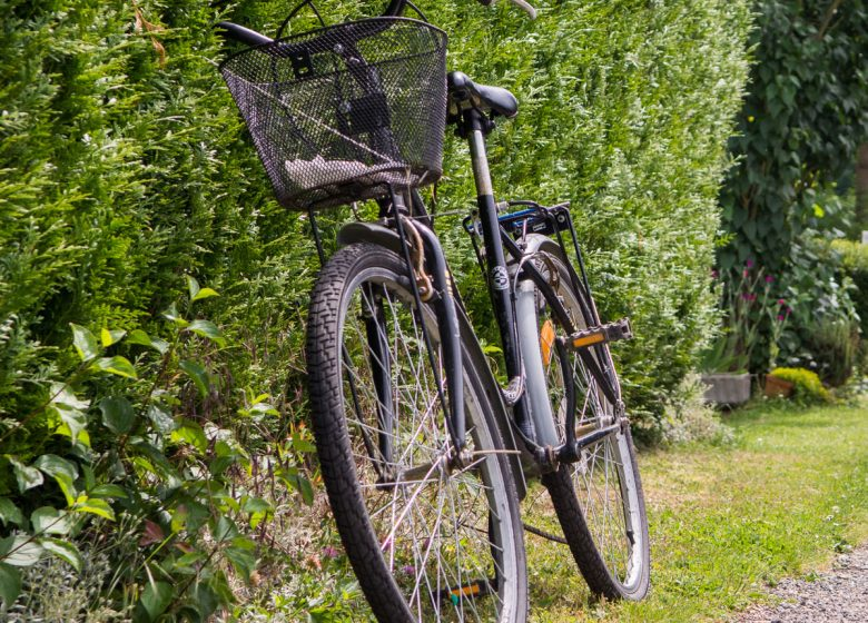 Orry Evasion-Loueur de vélos